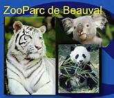 Zoo de Beauval enfant e-billet